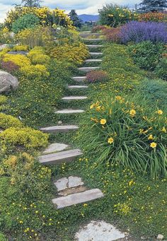 42 DIY Garden Walkway Projects For Your Inspirations Hillside Garden, Hillside Landscaping, Front Yard Landscaping, Garden Paths, Landscaping Ideas, Outdoor Landscaping, Terrace Garden, Natural Landscaping, Sloped Backyard