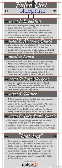 How to use the Paleo Blueprint to stick to your diet, and get fast results.