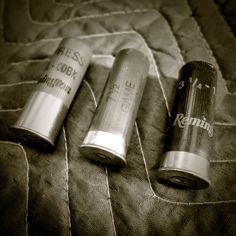lesurvivaliste: 5 Armes a Feu pour la Résilience Familiale