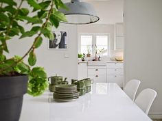 a swedish apartment with lots of greenery