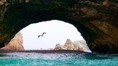 Islas Ballestas - Paracas