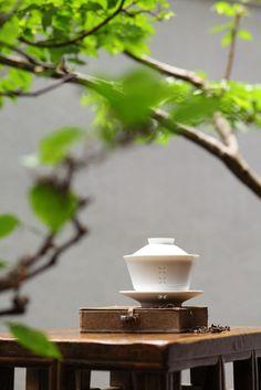 Beautiful Chinese gong-fu surrounded by nature Tee Kunst, Chinese Tea Cups, Asian Tea, Tea Culture, Japanese Tea Ceremony, Chai, Rose Tea, Tea Art, Tea Blends