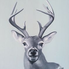 Black and white deer - By Linda Otton