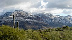 winter scene from mount lemmon arizona | Snow on Mt. Lemmon | Flickr - Photo Sharing!