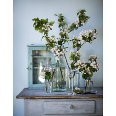 An ode to spring blossom – ideas for incorporating this pretty bloom into your spring wedding Fresh Flowers, Spring Flowers, Beautiful Flowers, Flowers Vase, Flower Jars, Peach Flowers, Romantic Flowers, Simple Flowers, Edible Flowers