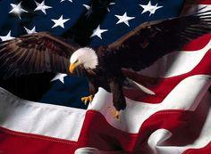 american flag september 11