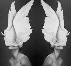 Resultado de imagen para photography art fashion