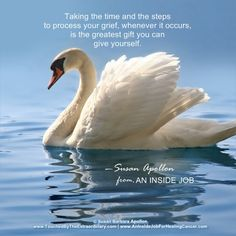 """Taking the time and the steps to process your grief, whenever it occurs, is the greatest gift you can give yourself."" —Susan Barbara Apollon, Psychologist and Author of AN INSIDE JOB: A Psychologist Shares Healing Wisdom for Your Cancer Journey: https://www.amazon.com/Inside-Job-Susan-Barbara-Apollon/dp/0975403605"