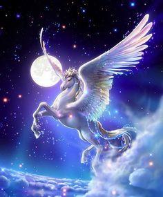 A beautiful Pegasus Unicorn!
