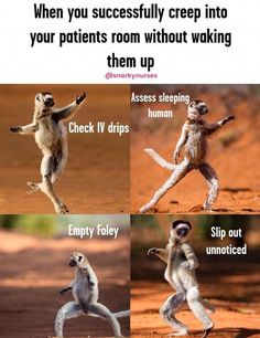 That is too funny! - Nursing Meme - That is too funny! The post That is too funny! appeared first on Gag Dad. Med Student, Medical Student, Student Memes, Nursing Students, Student Nurse Humor, Nurse Education, Medical Assistant, Medical Field, Student Gifts