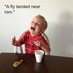 hilarious 'Reasons my kids are crying'