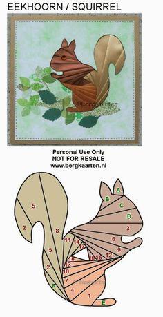 Irisvouwen: Squirrel