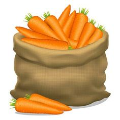 Illustration of Illustration of a sack of carrots on a white background. Vector icon vector art, clipart and stock vectors. Fruit Bio, Fruit And Veg, Fruits And Vegetables, Fitness Nutrition, Health And Nutrition, 2 Clipart, Vegetable Illustration, Vegetable Basket, Farm Fun
