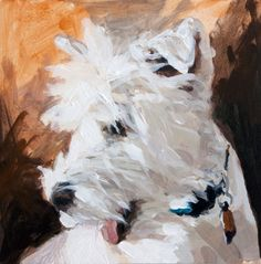 SPLASHDUCK sharing cute adorable animal pictures. Rocky ll 6 x 6 Acrylic Dog Portrait by John K. Harrell, painting by artist John K. Harrell