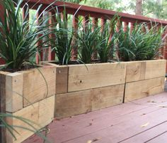 """Planter Boxes made from treated pine sleeper off cuts. Planted with Liriope """"Evergreen Giant""""."""