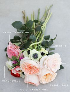 Garden Roses, Anemones, Ranunculus, Etc. White on grey background, lovley