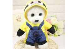 Hot Winter Dog Coats Cotton Wear Autumn Jackets Cosplay Costume With Cap Chihuahua Pets Coats Small Minion Dog Costume, Minion Onesie, Cute Dog Halloween Costumes, Cute Costumes, Dog Costumes, Pet Coats, Dog Winter Coat, Cute Funny Dogs, Dog Hoodie