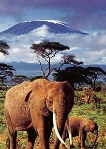 Kenia, been to it and want to go again one day. What a beautiful country, the best beaches and the nicest people.