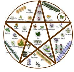 Pentagram garden idea.. good list of herbs!