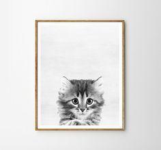Kitten Baby Nursery Animal Kids room Modern art от WallArt2Decor