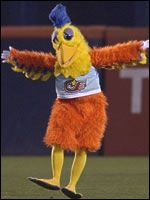 San Diego Chicken: In existence since 1974, the San Diego Chicken -- or The Famous Chicken as it's known -- is the granddaddy of professional sports mascots. Enshrined in Cooperstown, the giant yellow chicken was named by the Sporting News as one of the Top 100 Most Powerful People In Sports For The 20th Century. The chicken was not only the 1st pro mascot, but also the 1st to taunt an opposing team, the 1st to use recorded popular music in a game, and the 1st to be included on a baseball…