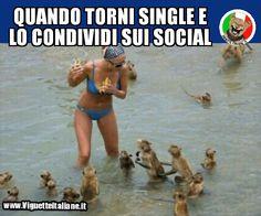 * Single e social (www,VignetteItaliane.it)