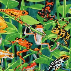 green frog fabric by Timeless Treasures from the USA
