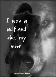 I will always see her as my moon, even though she may never see me as her wolf again as long as she's well that is all I wish.