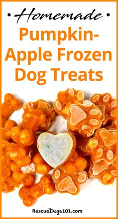 Homemade Pumpkin Carrot Frozen Dog Treats 7 different frozen dog treat recipes included - Dog Food - Ideas of Dog Food Dog Biscuit Recipes, Dog Treat Recipes, Healthy Dog Treats, Dog Food Recipes, Pet Treats, Food Dog, Best Dog Food, Raw Food For Dogs, Homemade Dog Cookies