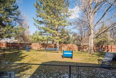 We love our residents and they're sure to love running around our spacious Bark Park! Love Run, Run Around, Fort Collins, Apartments, Tours, Running, Park, Places, Outdoor Decor