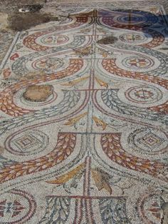 Mosaic floor in the House of Venus at Dougga, Tunisia