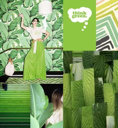 Pantone color of the year 2017 is greenery   ITALIANBARK #pantone #greenery #coloroftheyear Pantone 2017 was revealed just a couple of days ago and we are all already in love with it: Greenery (Pantone 13-0343) Greenery is the symbol of new beginnings, a refreshing and revitalizing shade of green with a really small dose of …