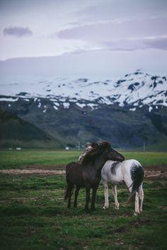 Iceland by Eva Kosmas Flores | Adventures in Cooking
