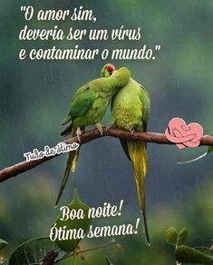Parrot, Bird, Animals, Inspiring Messages, Love Messages, Days Of Week, Great Week, Birds, Parrot Bird