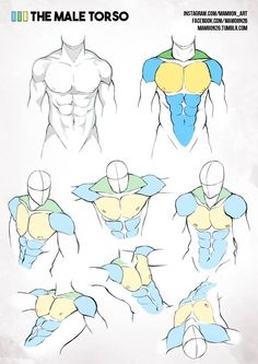 AnatoRef — Simplified Anatomy by Mamoon26
