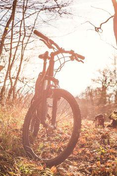 New free stock photo of landscape nature trees Mountain Biking Quotes, Mountain Biking Women, Mountain Bike Trails, Moutain Bike, Bike Photography, Photography Photos, Landscape Photography, Trekking, Camping Sauvage