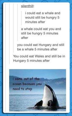 I think I laughed way too hard at this!