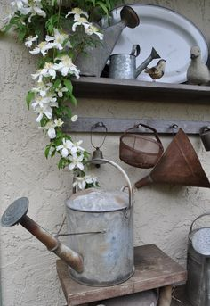 Zinc a-de-do-dah ✧ watering cans garden, garden accessories Rustic Gardens, Outdoor Gardens, Rustic Watering Cans, Vintage Gardening, Potting Sheds, Garden Accessories, Yard Art, Garden Inspiration, Garden Tools