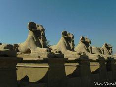 Mount Rushmore, Lion Sculpture, Statue, Mountains, Travel, Art, Vienna, Art Background, Viajes