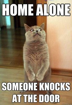 This is me when my creepy registered offender neighbor knocks on our door.
