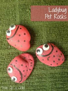 Lady Bug Pet Rocks and other kindergarten crafts that teach about insects!