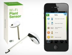 Koubachi WiFi Plant Sensor reminds you to water the plants