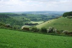Fontmell Down.  This area of natural beauty was bought in memory of Thomas Hardy, to protect the landscape in which his novels are set.