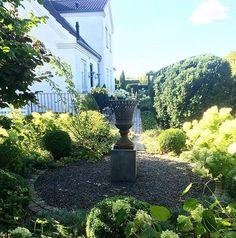 A little shady corner 🌳🏺🌾🌳#mygarden #garden #instagardenlovers #haven #minhave #tuin #garten #hage #trädgård #jardin #boxwood #myhouse