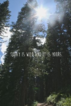 Today is wild and it is yours quote. Camping quotes, hiking quotes, outdoors, nature quotes to brighten your day. Hiking Quotes, Travel Quotes, Citation Nature, Nature Quotes Adventure, Adventure Quotes Outdoor, Quotes For Nature, Mountain Quotes, The Wicked The Divine, Mothers Day Quotes