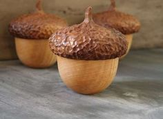 Acorn Woodland Containers