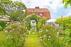 Lovely swedish garden