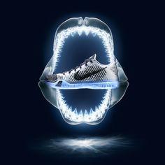 Nike X Kobe by Shane Griffin