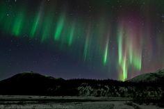 Aurora Borealis over the Koyukuk River along Alaska's Arctic Circle.