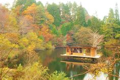 Autumn leaves Rokko Japan
